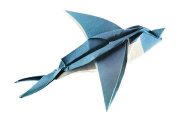 Jak se skládá papírová vlaštovka