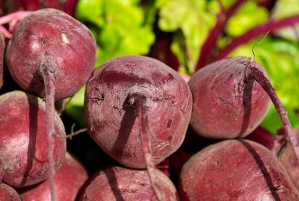 Recept na salát z červené řepy
