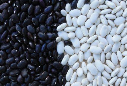 Jak připravit ty nejlepší fazole na kyselo?